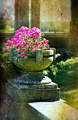 Flower Planter Photograph - The Grecian Urn by Diana Angstadt