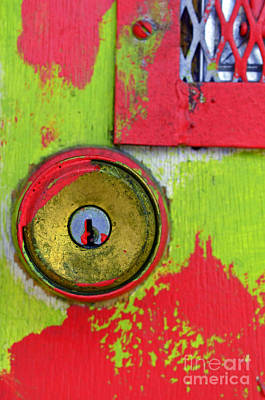 Photograph - The Green And Red Door by Tara Turner