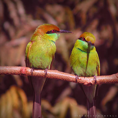 The Green Bee Eater Couple Original by Shubhansh Shukla