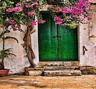 The Green Door Art Print by Rod Jellison