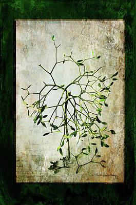 Photograph - The Green Myth by Randi Grace Nilsberg