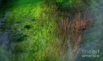 Photograph - The Green River by Hernan Bua