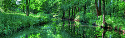 Photograph - The Green Spreewald by Sun Travels