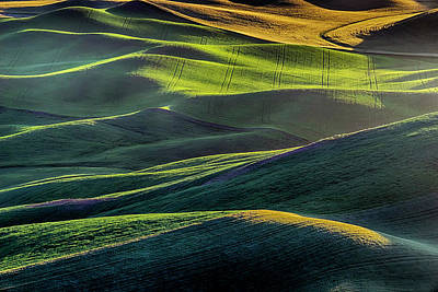 Photograph - The Green Waves Of Palouse Wa Dsc05032  by Greg Kluempers