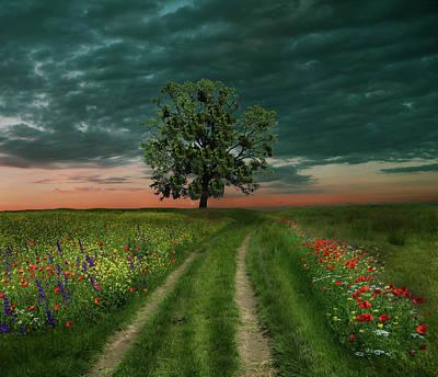 Photograph - The Green Way... by Juliana Nan