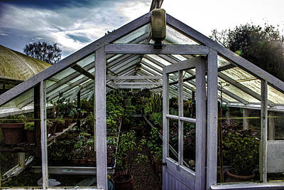 Beth Photograph - The Greenhouse by Martin Newman