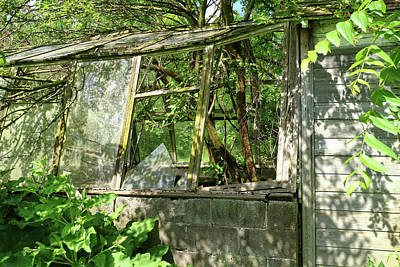 Photograph - The Greenhouse by Scott Kingery