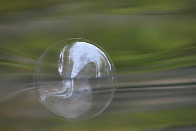 Photograph - The Greens Bubble by Cathie Douglas