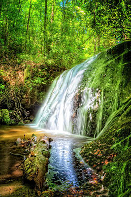 Photograph - The Greens Of Summer by Debra and Dave Vanderlaan
