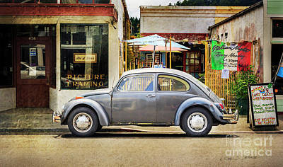 Photograph - The Grey Beetle by Craig J Satterlee