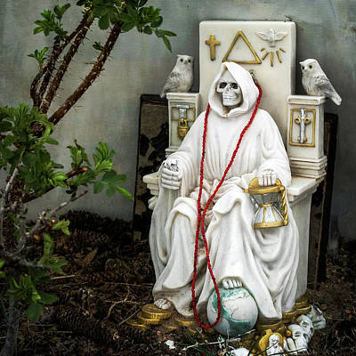Photograph - The Grim Reaper by Mary Lee Dereske