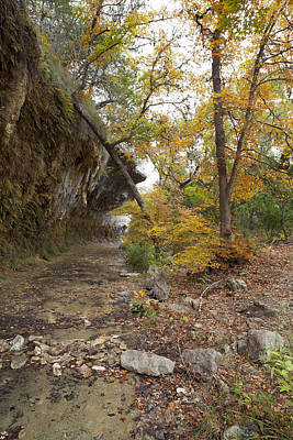 Lost Maples The Grotto Art Print by Mike Brymer