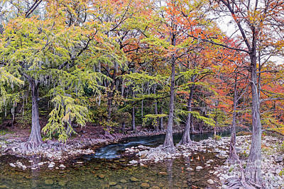 Photograph - The Guadalupe River As It Makes Its Way Through Gruene - New Braunfels - Texas Hill Country by Silvio Ligutti