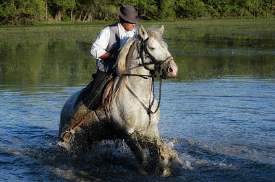 Troupeau Photograph - The Guardian In Camargue by Alain Gaymard