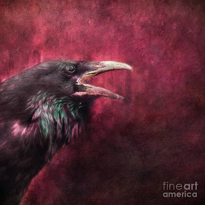 Blackbird Wall Art - Photograph - The Guardian by Priska Wettstein