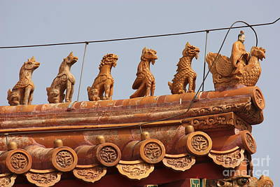Photograph - The Guardians Of The Forbidden City by Carol Groenen