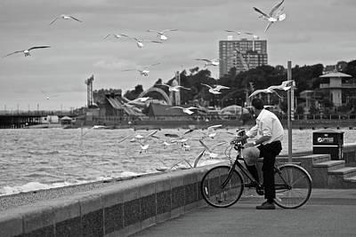 Photograph - The Gull Man by Makk Black
