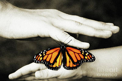 The Hands And The Butterfly Art Print by Andee Design
