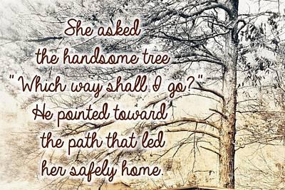 Photograph - The Handsome Tree by Rachel Hannah