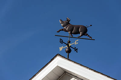 Photograph - The Happy Piglet Weathervane by Georgia Mizuleva