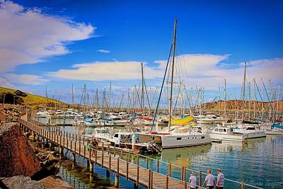 Photograph - The Harbour by Wallaroo Images