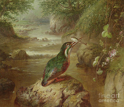 Kingfisher Wall Art - Painting - The Haunt Of The Kingfisher by John Wainwright