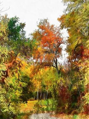 Photograph - The Haunted Path by Dorothy Berry-Lound