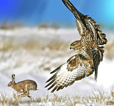 Pheasant Mixed Media - The Hawk And The Hare by Thomas Pollart