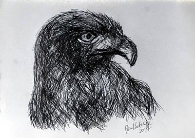 Buzzard Drawing - The Hawk by Paul Sutcliffe