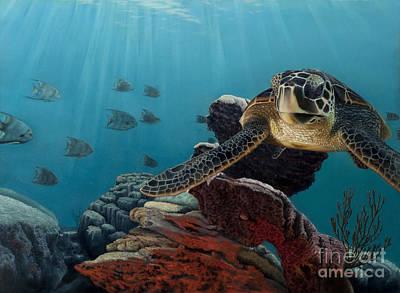 Painting - Hawksbill Turtle by Alan Feldmesser