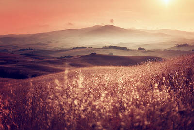 Photograph - The Haze by Radek Spanninger