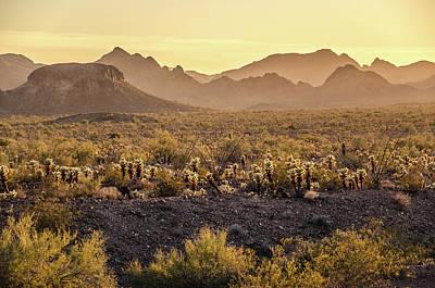 Photograph - The Hazy Desert by Margaret Pitcher