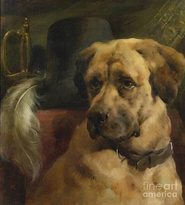 Mastiff Dog Painting - The Head Of A Mastiff by MotionAge Designs