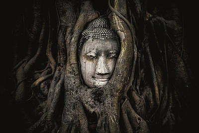 Photograph - The Head Of A Sandstone Buddha Statue Nestled In The Tree Roots Beside The Minor Chapels Of Wat Maha by Siripatwongpin