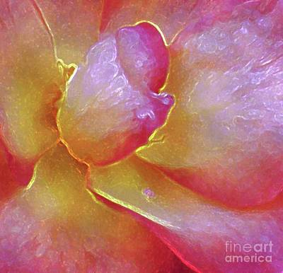 Photograph - The Heart Of A Rose by Hazel Holland