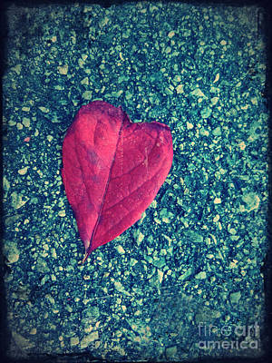 Photograph - The Heart Of Leaves by Tara Turner