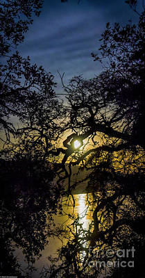 Clearlake Photograph - The Heart Of The Night by Mitch Shindelbower