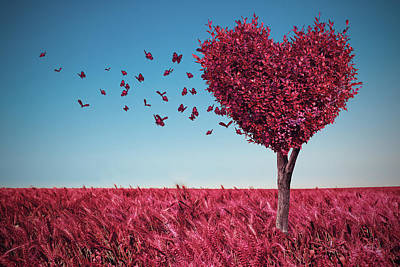 Photograph - The Heart Tree by Mihaela Pater