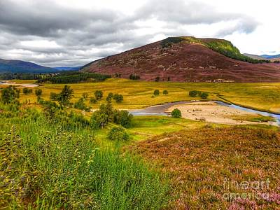 Photograph - The Heather At Royal Deeside by Joan-Violet Stretch