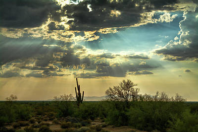 Photograph - The Heavenly Desert Skies  by Saija Lehtonen