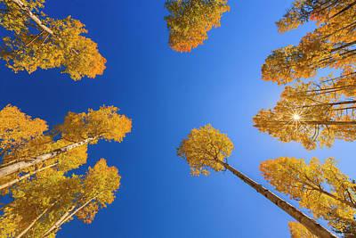 Photograph - The Heavens Declare by Rick Furmanek
