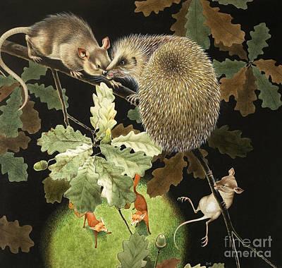 Acorn Painting - The Hedgehog by David Nockels
