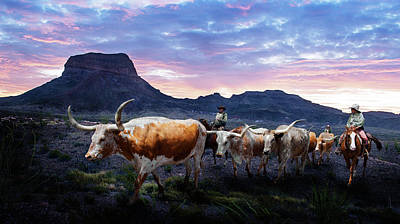 Big Bend National Park Photograph - Texas Longhorns Blue by Rospotte Photography
