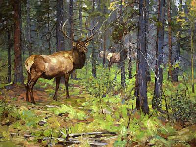 Glen Painting - The Herd Bull by Rungius Carl