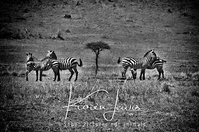 Art Print featuring the photograph The Herd by Karen Lewis