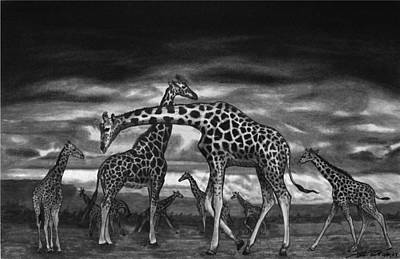 Charcoal Drawing - The Herd by Peter Piatt