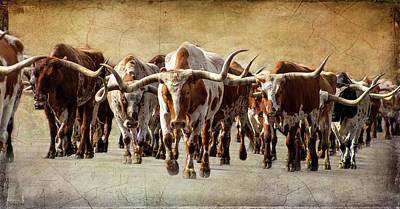 Cattle Drive Photograph - The Herd by Steven Reed
