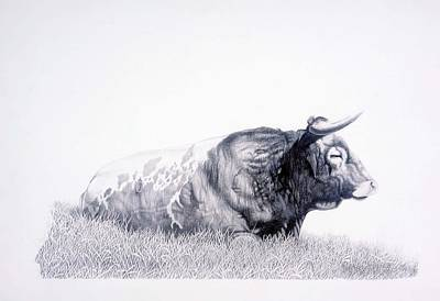 Drawing - The Herdmaster by Howard Dubois