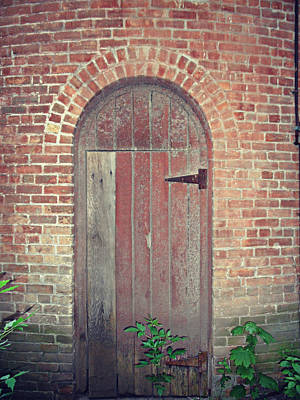Photograph - The Hidden Door by Cyryn Fyrcyd