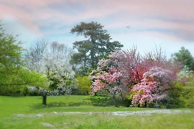 Photograph - The Hidden Garden by Diana Angstadt
